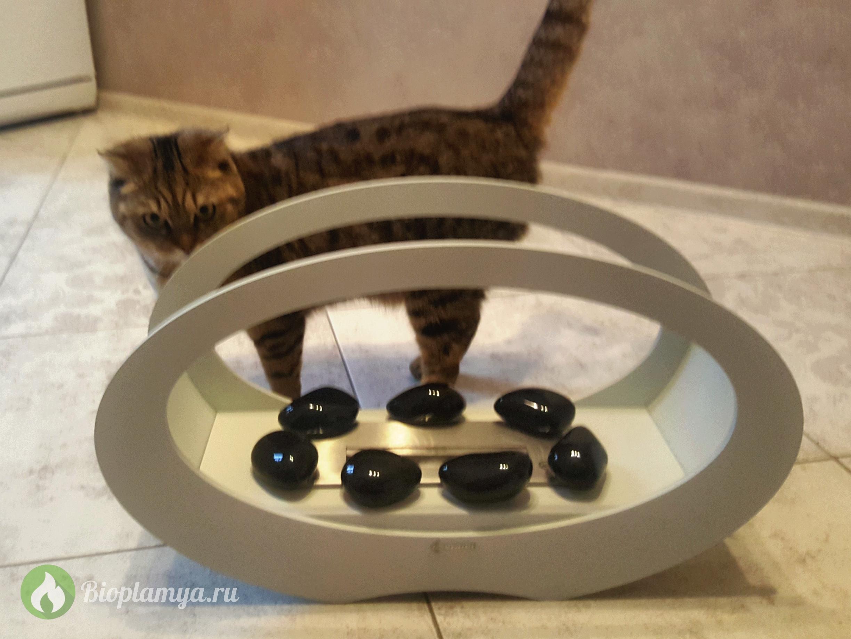 Биокамин_с_камнями_кошка.jpg