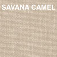 savana camel