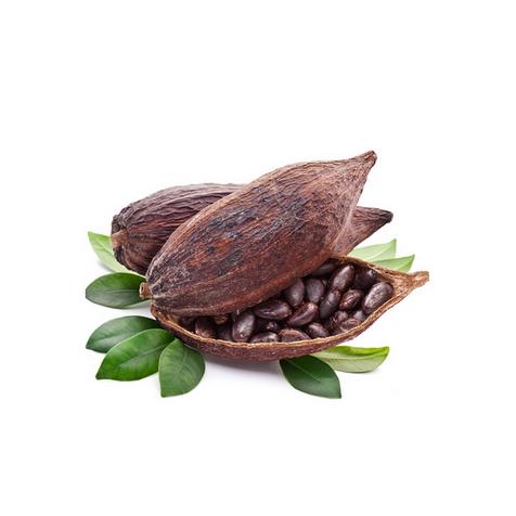 Масло какао ( Theobroma cacao)