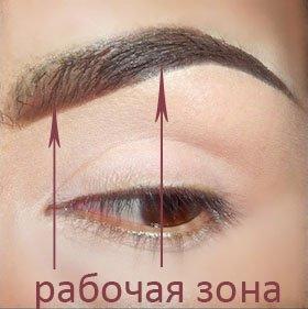 зона контура глаза