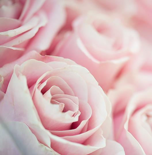 Ноты сердца: Роза/Гелиотроп/Персик