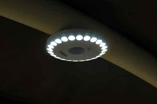 Барышня фонарь