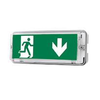 Gemini Эвакуационные световые указатели для школ и детских садов