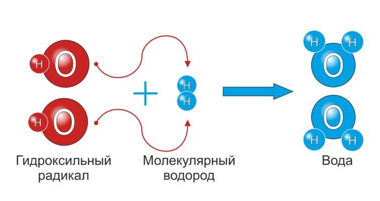 Gidroksilnyj Radikal 756x400