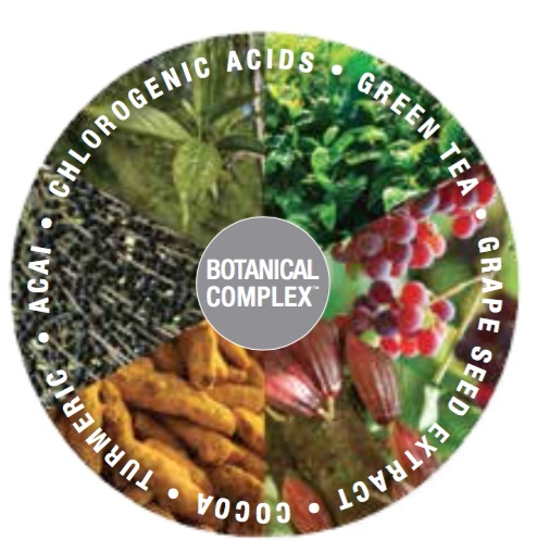 botanic_complex.jpg