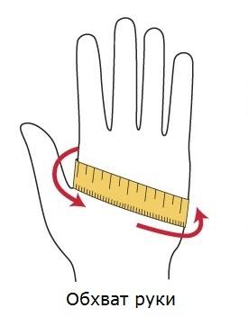 Обхват руки