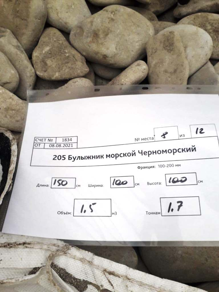 булыжник плоский черноморский