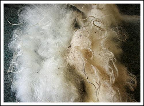 Перед отмокой грязное меховое сырье необходимо отмыть