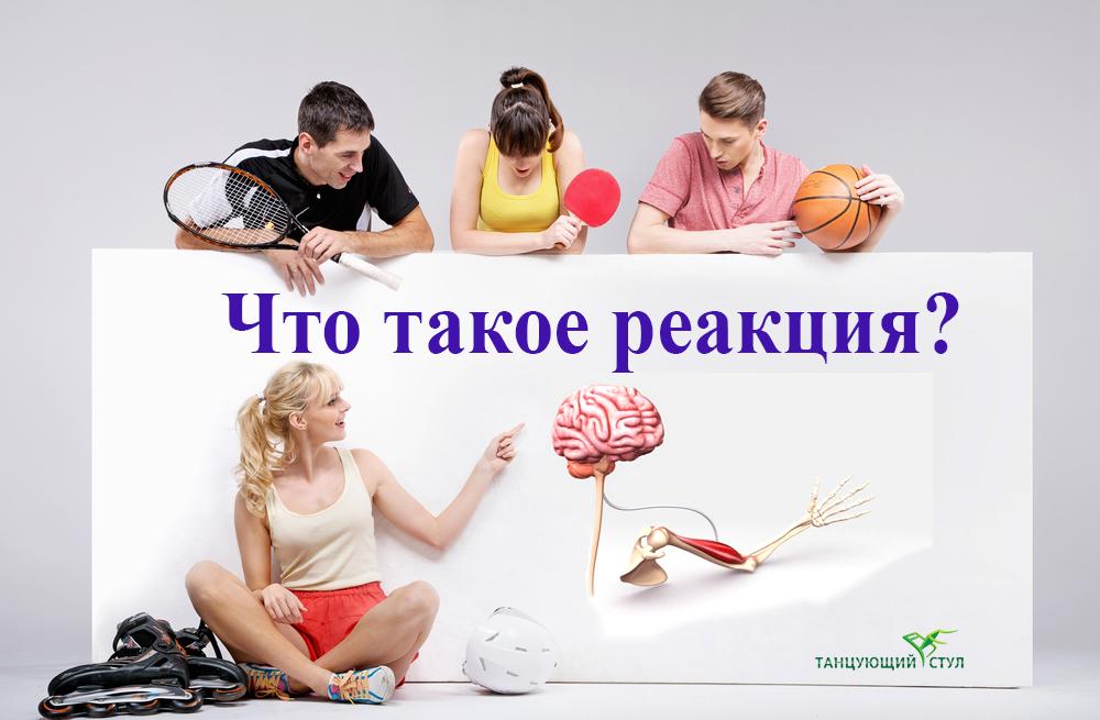 Фотография теннисист, баскетболист рассматривают плакат работы мозга