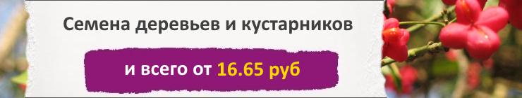 Купить семена Деревьев и кустарников, цена низкая, доставка почтой наложенным платежом по России, курьером по Москве - интернет-магазин АгроБум