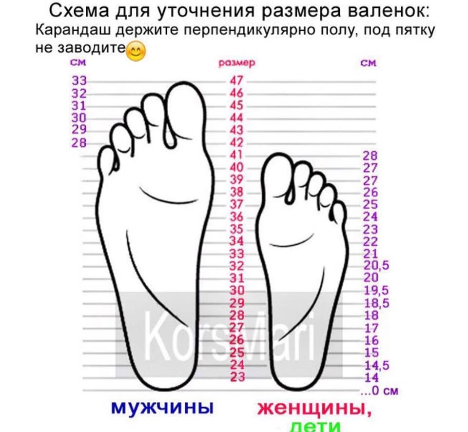 Схема уточнения размера валенок