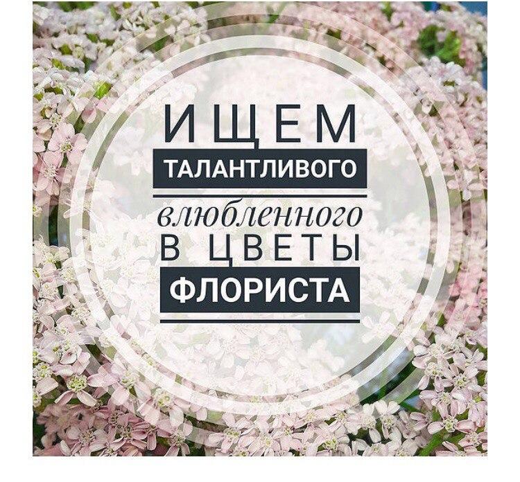 FkhfeD_Kb-E.jpg