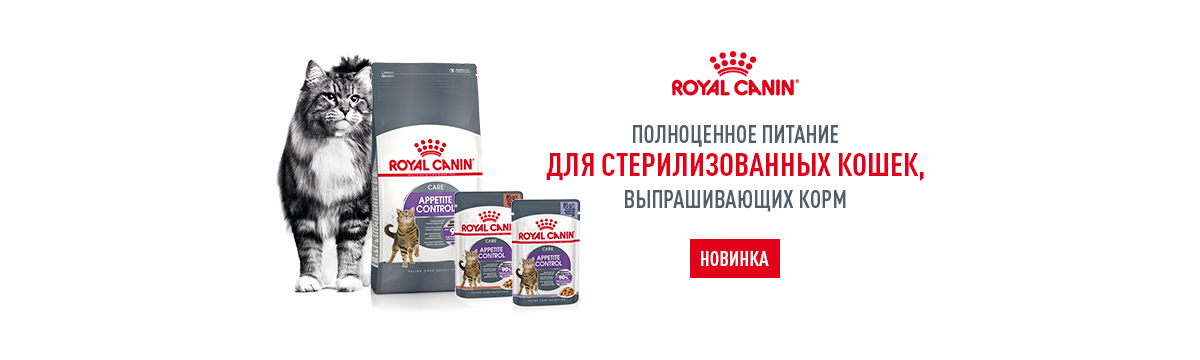 Royal Canin Appetite
