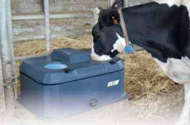 Изолированная незамерзающая поилка с 1 или 2 чашами для коров/коз/овец/лошадей