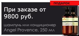 Набор Шамп+Конд 250