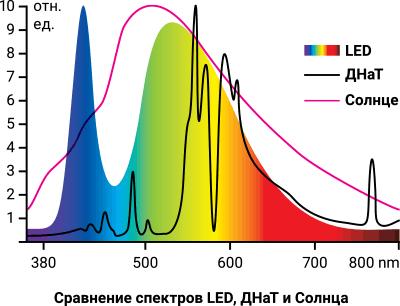 Сравнение спектров LED, ДНаТ и Солнца