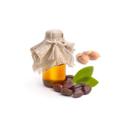 Масло жожоба (Simmondsia chinenis)