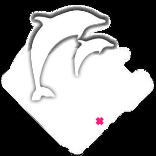 Полный каталог мужской и женской одежды от бренда Pink Dolphin
