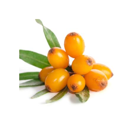 Экстракт облепихи (Hippophae salicifolia)