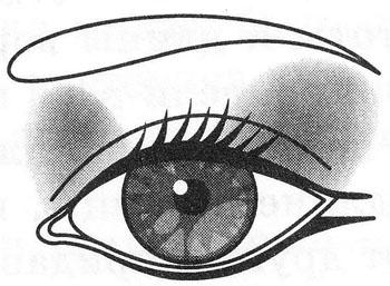 Макияж щелевидных (узких) глаз