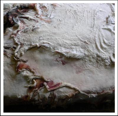 Консервированные солью шкуры