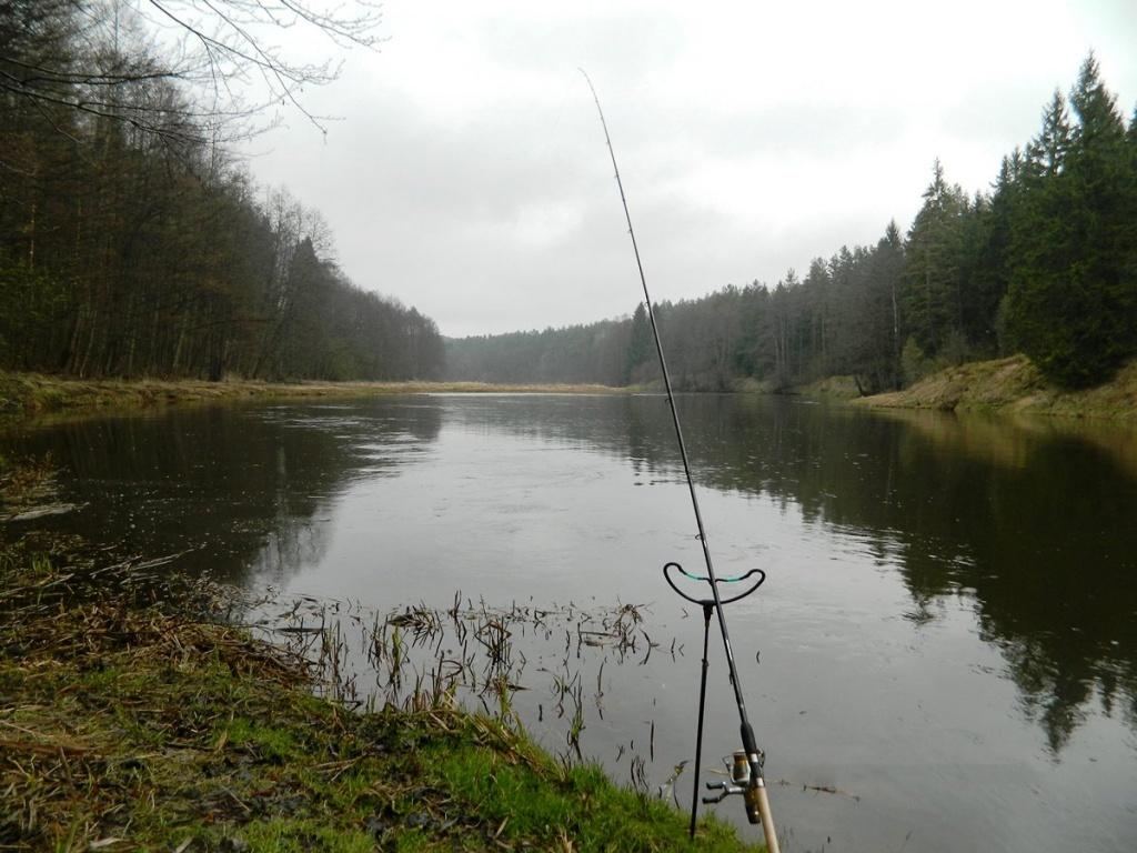 как ловить рыбу фидером на реке в апреле 00004.jpg