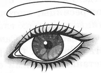 Макияж восточных (восходящих) глаз