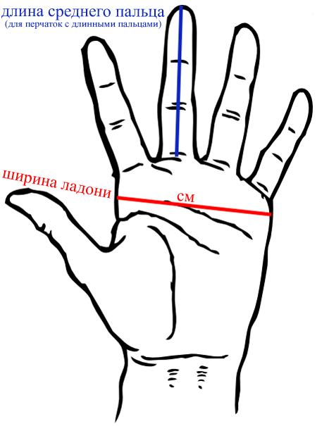 Как измерить руку для перчаток