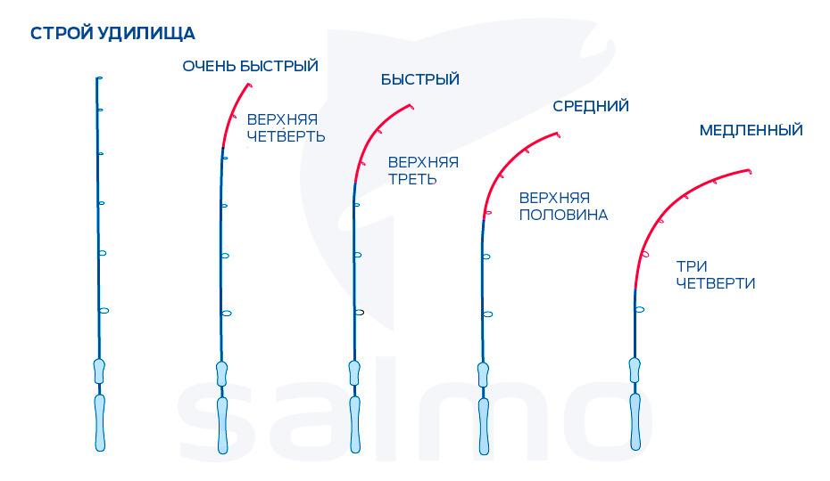Что такое и каким бывает строй спиннингового удилища