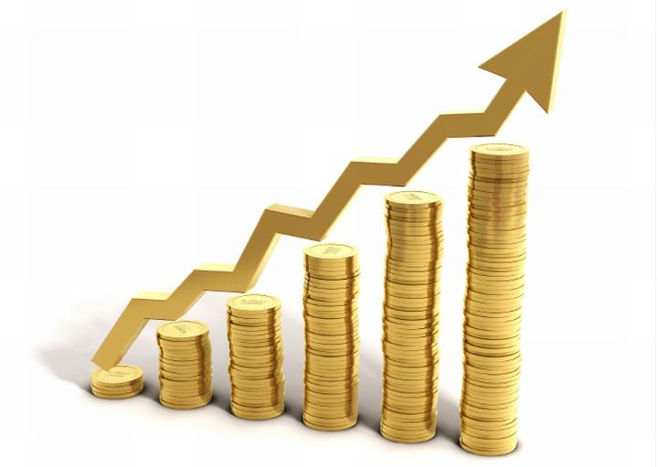 Инвестиции должны идти в сферу с потенциально максимальной прибылью