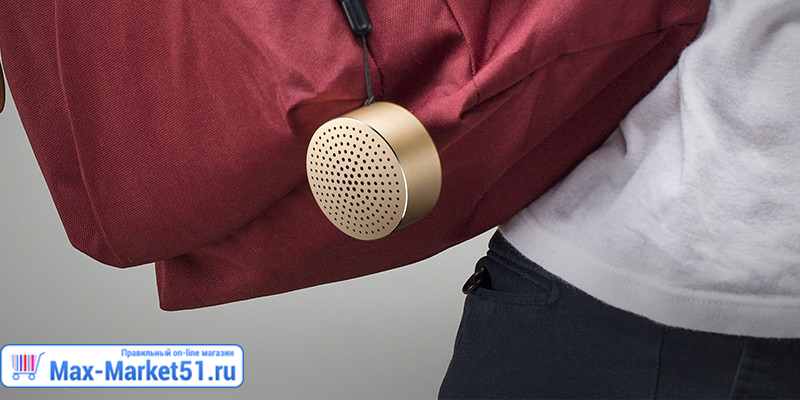 Колонка Xiaomi Little Audio (черный)