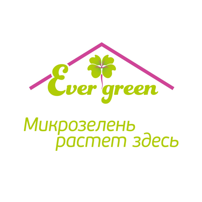 Microgreen.store - вкусное и здоровое питание