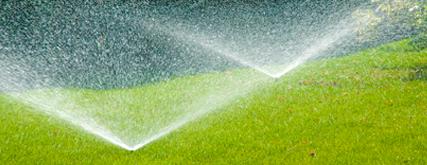 Не платите за полив сада, если на улице дождь