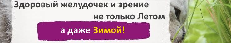 Купить семена травы для домашних животных, цена низкая, доставка почтой наложенным платежом по России, курьером по Москве - интернет-магазин АгроБум