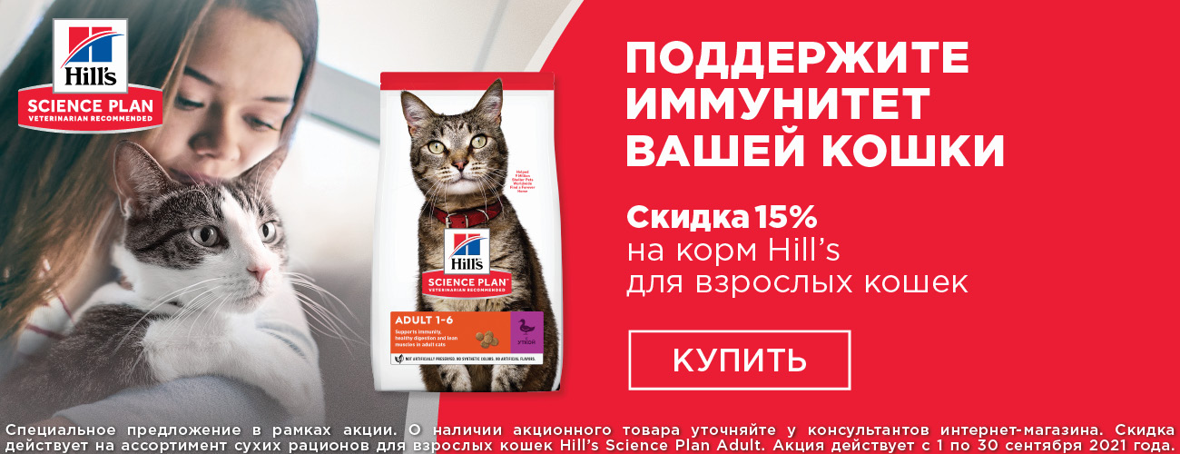 Hill`s - 15%