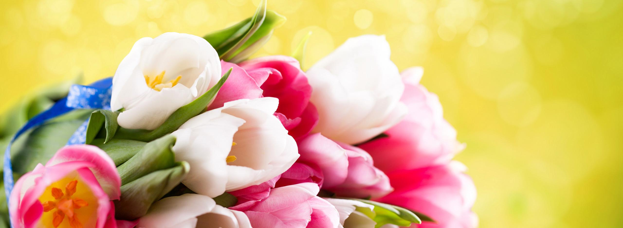 Милые дамы, поздравляем с праздником 8 марта!