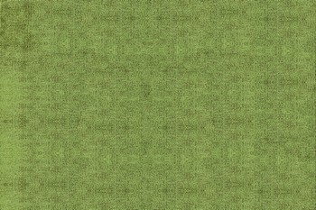 orimex_tkan_2-046.jpg