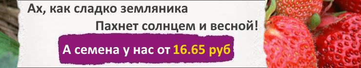 Купить семена Ягодные культуры, цена низкая, доставка почтой наложенным платежом по России, курьером по Москве - интернет-магазин АгроБум.