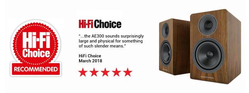 Полочная акустика Acoustic Energy AE300