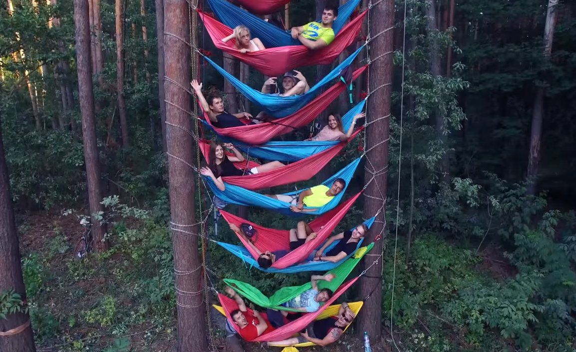 гамак между деревьями