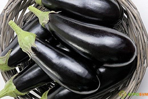 Купить семена Баклажан Багира F1 15 шт. по низкой цене доставка курьером по Москве - интернет-магазин АгроБум.Ру.Ру