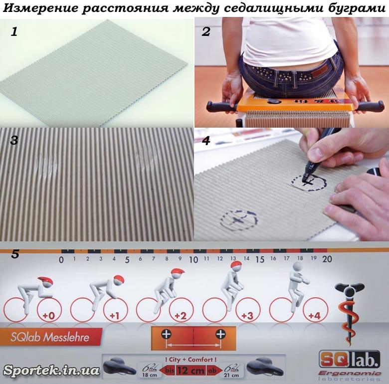 Как измерить расстояние между седалищными буграми