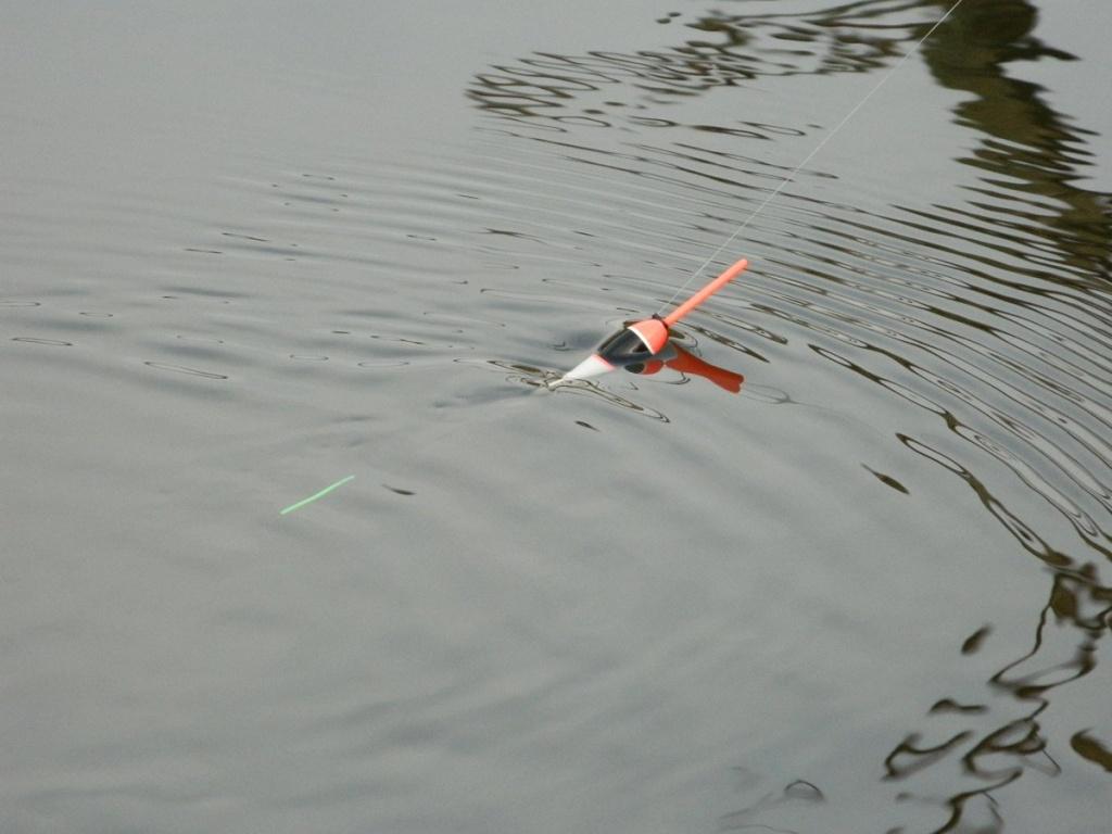 рыбалка с болонкой на реке ранней весной  00006.JPG