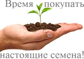 Favseeds.ru интернет-магазин редких растений