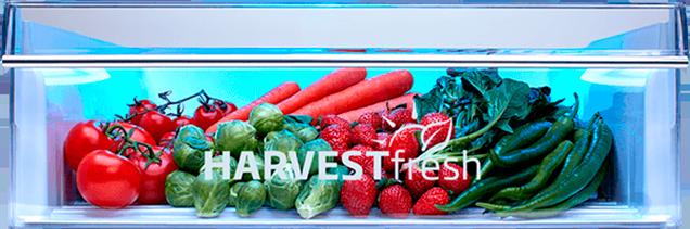 Синий свет – HarvestFresh