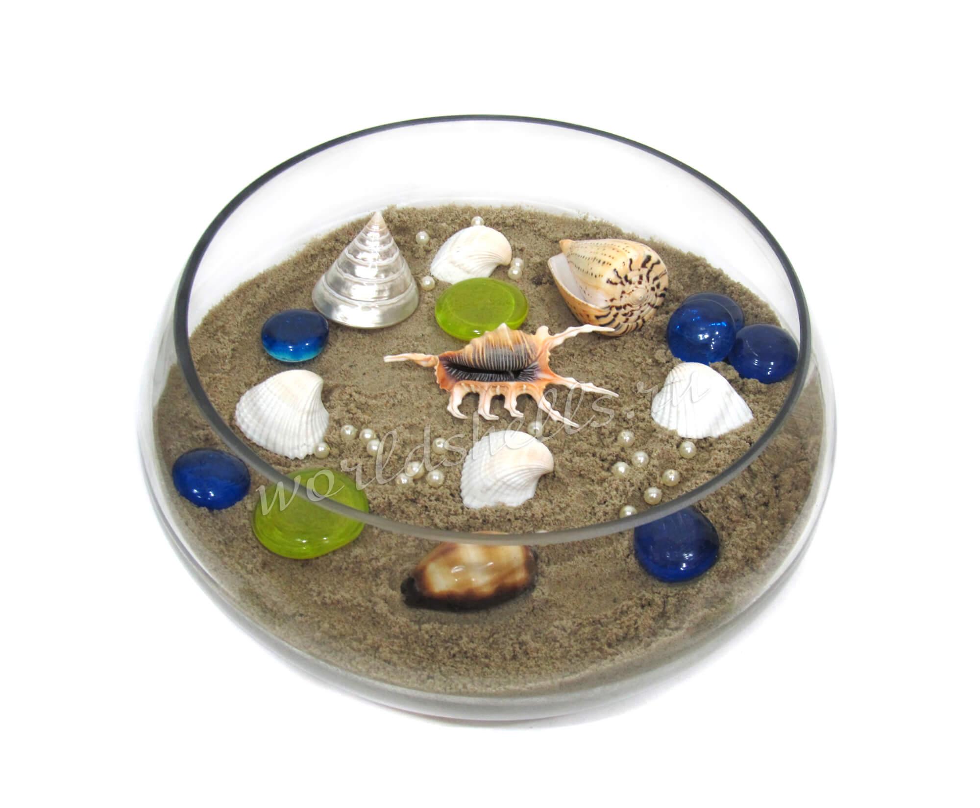 Композиция с песком и морскими ракушками