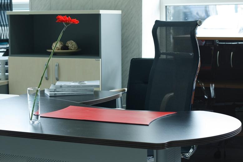 Коврик на письменный стол