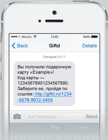 example_sms.png