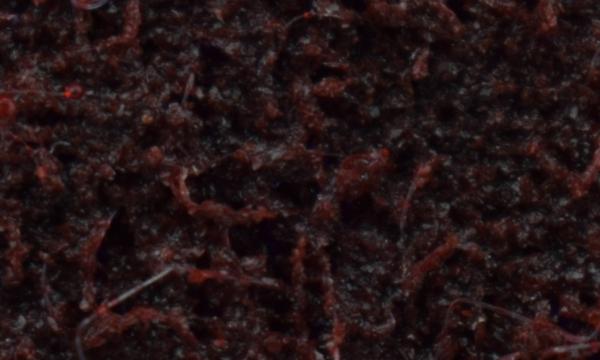 Medium средне зерно бордовый цвет зернистость по FEPA P100 - P150