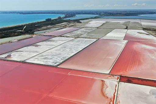 Розовая крымская соль